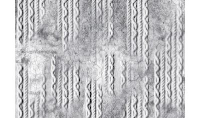 Consalnet Vliestapete »Geflecht auf Beton/Grau«, Flechtoptik kaufen
