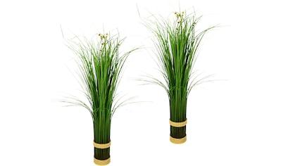 I.GE.A. Kunstpflanze »Grasbündel«, 2er Set kaufen