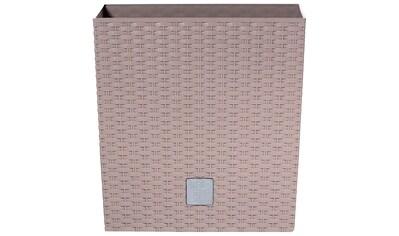 Prosperplast Blumentopf »Rato low«, BxTxH: 32x32x32,5 cm kaufen