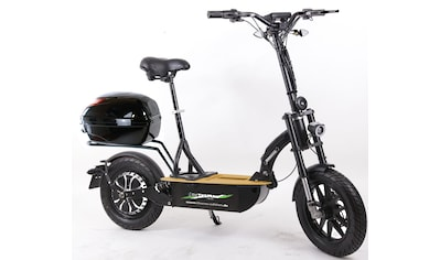 "Didi THURAU Edition E - Scooter »Elektroroller ""Eco - Tourer"" 20 km/h Safety Plus«, 600 Watt, 20 km/h kaufen"