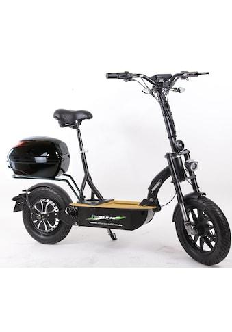 """Didi THURAU Edition E-Scooter »Elektroroller """"Eco-Tourer"""" 20 km/h Safety Plus« kaufen"""