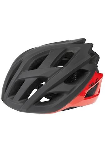 XLC Fahrradhelm »BH - C23« kaufen