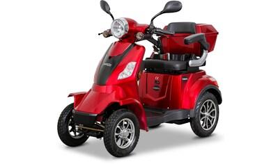 Rolektro Elektromobil »Rolektro E-Quad 25«, 1000 W, 25 km/h, (mit Topcase) kaufen