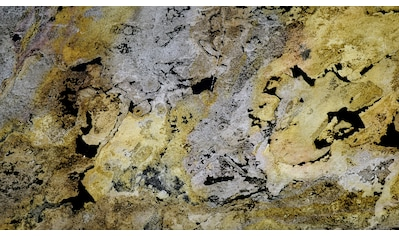 Slate Lite Dekorpaneele »EcoStone Translucent Falling Leaves«, aus Echtstein kaufen