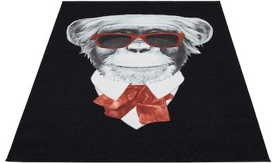 Andiamo Teppich »Karl der Affe«, rechteckig, 4 mm Höhe, modernes Design, bedruckt,... kaufen