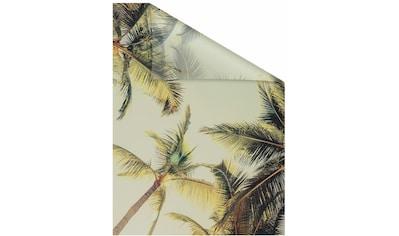 LICHTBLICK Fensterfolie »Palmen und Sonne«, selbstklebend, Sichtschutz kaufen