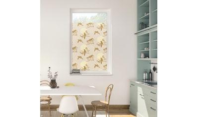LICHTBLICK ORIGINAL Fensterfolie »Fensterfolie selbstklebend, Sichtschutz, Moon Birds... kaufen