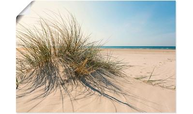 Artland Wandbild »Strandgras«, Küste, (1 St.), in vielen Größen & Produktarten - Alubild / Outdoorbild für den Außenbereich, Leinwandbild, Poster, Wandaufkleber / Wandtattoo auch für Badezimmer geeignet kaufen