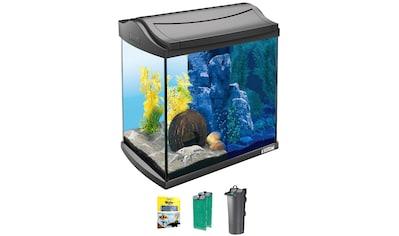 TETRA Aquarium »AquaArt LED Discovery Line«, 30 Liter, BxTxH: 39,5x28x43 cm, anthrazit kaufen