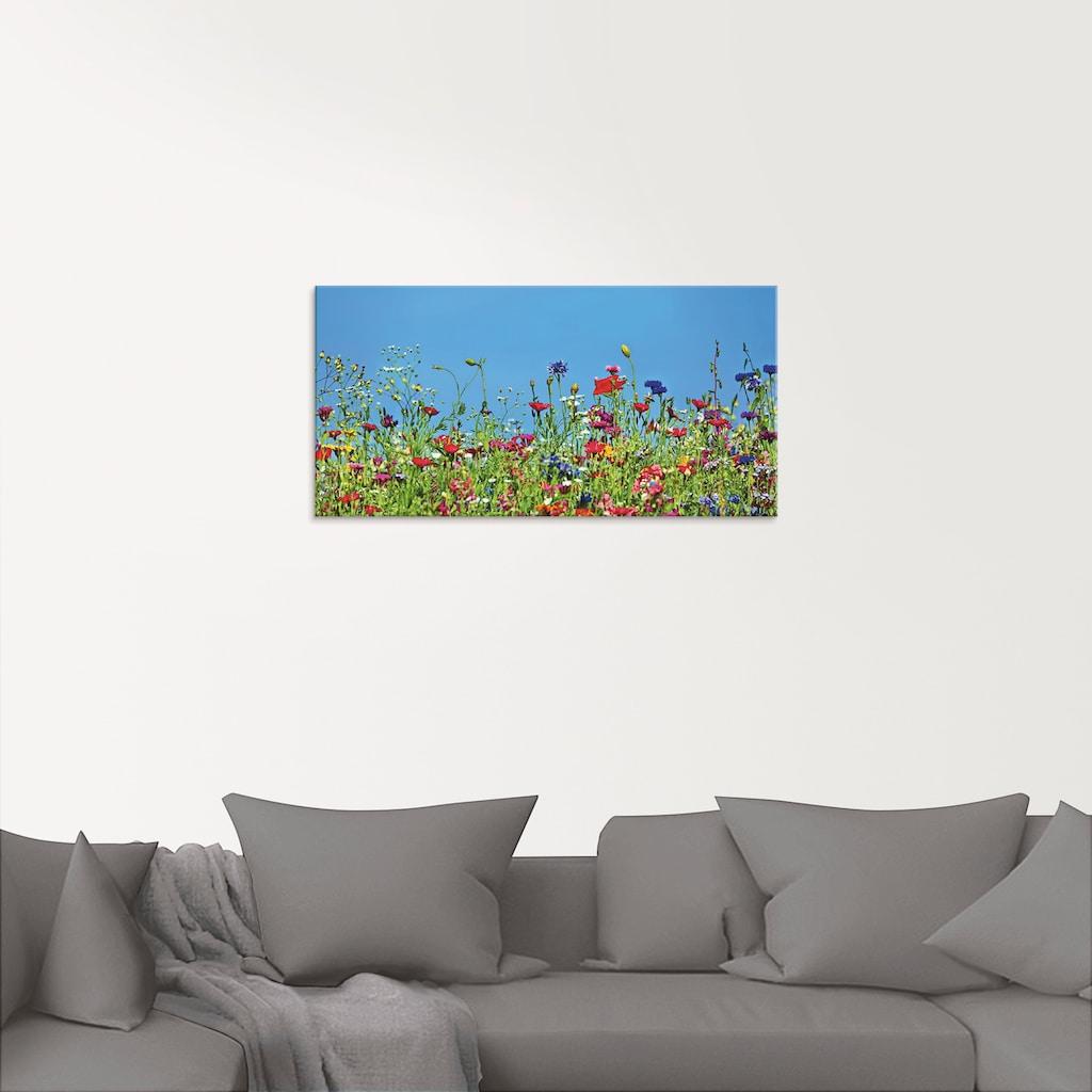 Artland Glasbild »Blumenwiese II«, Blumenwiese, (1 St.)