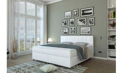 SalesFever Bett, Boxspringbett Inklusive LED-Beleuchtung kaufen