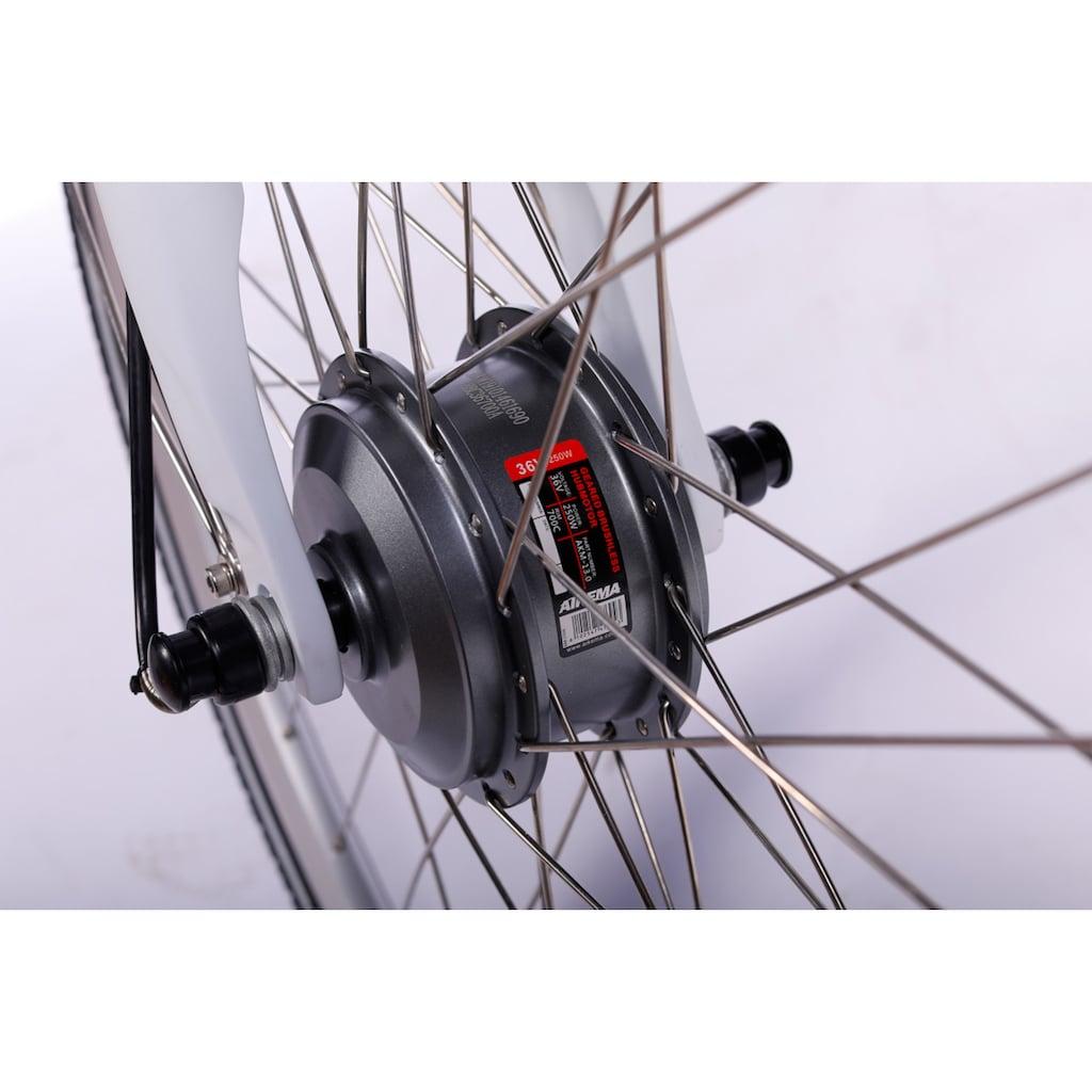 LLobe E-Bike »White Motion 2.0, 15,6Ah«, (mit Fahrradkorb)