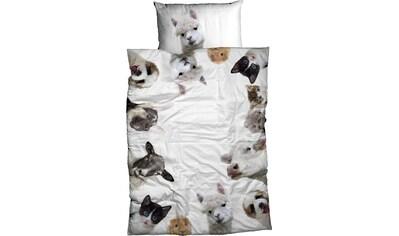 CASATEX Bettwäsche »Buddy«, lustige Tiere kaufen
