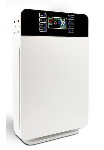 MediaShop Luftreiniger »Livington Air Purifier« kaufen