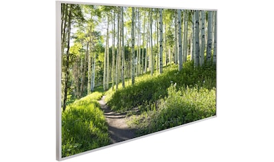 Papermoon Infrarotheizung »Birken Wald, EcoHeat«, Aluminium, 600 W, 100x60 cm, mit Rahmen kaufen