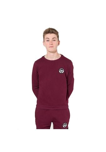 Hype Sweatshirt »Jungen mit Rundhalsausschnitt« kaufen