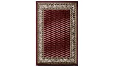 Sehrazat Teppich »Excellent 808«, rechteckig, 11 mm Höhe, Orient-Optik, Wohnzimmer kaufen