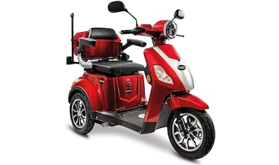 Rolektro Elektromobil »Rolektro E-Trike 15 V.3 Lithium«, 1000 W, 25 km/h, (mit Topcase) kaufen