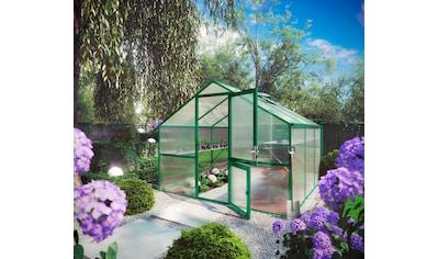 KGT Gewächshaus »Orchidee III«, BxTxH: 297x323x233 cm, grün, inkl. Regenrinne kaufen