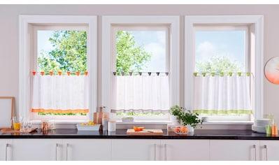 my home Scheibengardine »Bitola«, Fertiggardine, transparent kaufen