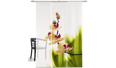 Schiebegardine, »Orchideenwunder«, emotion textiles, Klettband 3 Stück kaufen