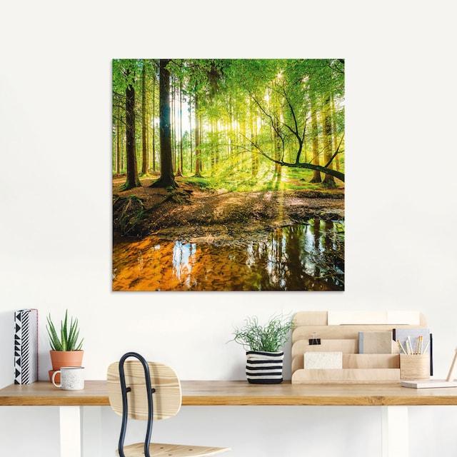 Artland Glasbild »Wald mit Bach«