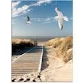 Artland Glasbild »Nordseestrand auf Langeoog mit Möwen«, Strand, (1 St.)