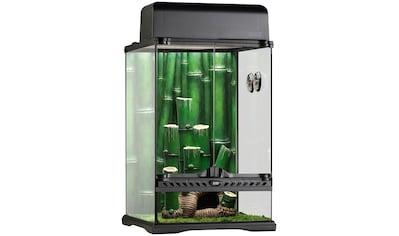Exo Terra Terrarium »Bamboo Forest Kit«, BxTxH: 33x33x48 cm kaufen