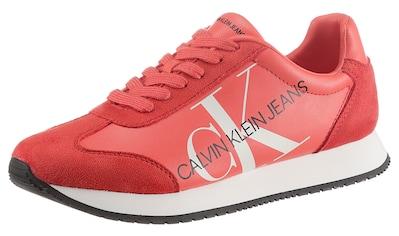 Calvin Klein Sneaker »Jodis« kaufen