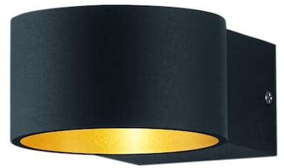 TRIO Leuchten LED Wandleuchte »LACAPO«, LED-Board, Warmweiß, Up and Down Beleuchtung kaufen