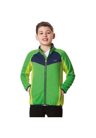 Regatta Outdoorjacke »Kinder / Jungen Softshelljacke Oberon« kaufen