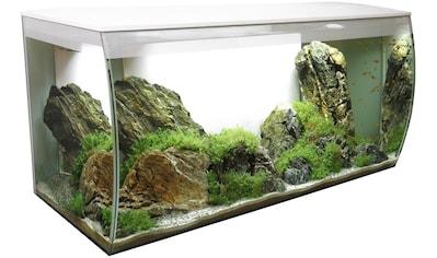 FLUVAL Aquarium »FLEX 123«, BxTxH: 82x40x40 cm, 123 Liter kaufen
