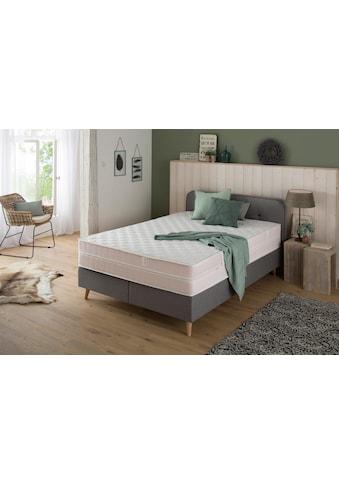 DI QUATTRO Komfortschaummatratze »Airy Form Luxus«, (1 St.), Die Matratze, die atmet. Extra hoch und komfortabel, Schnäppchenpreis kaufen