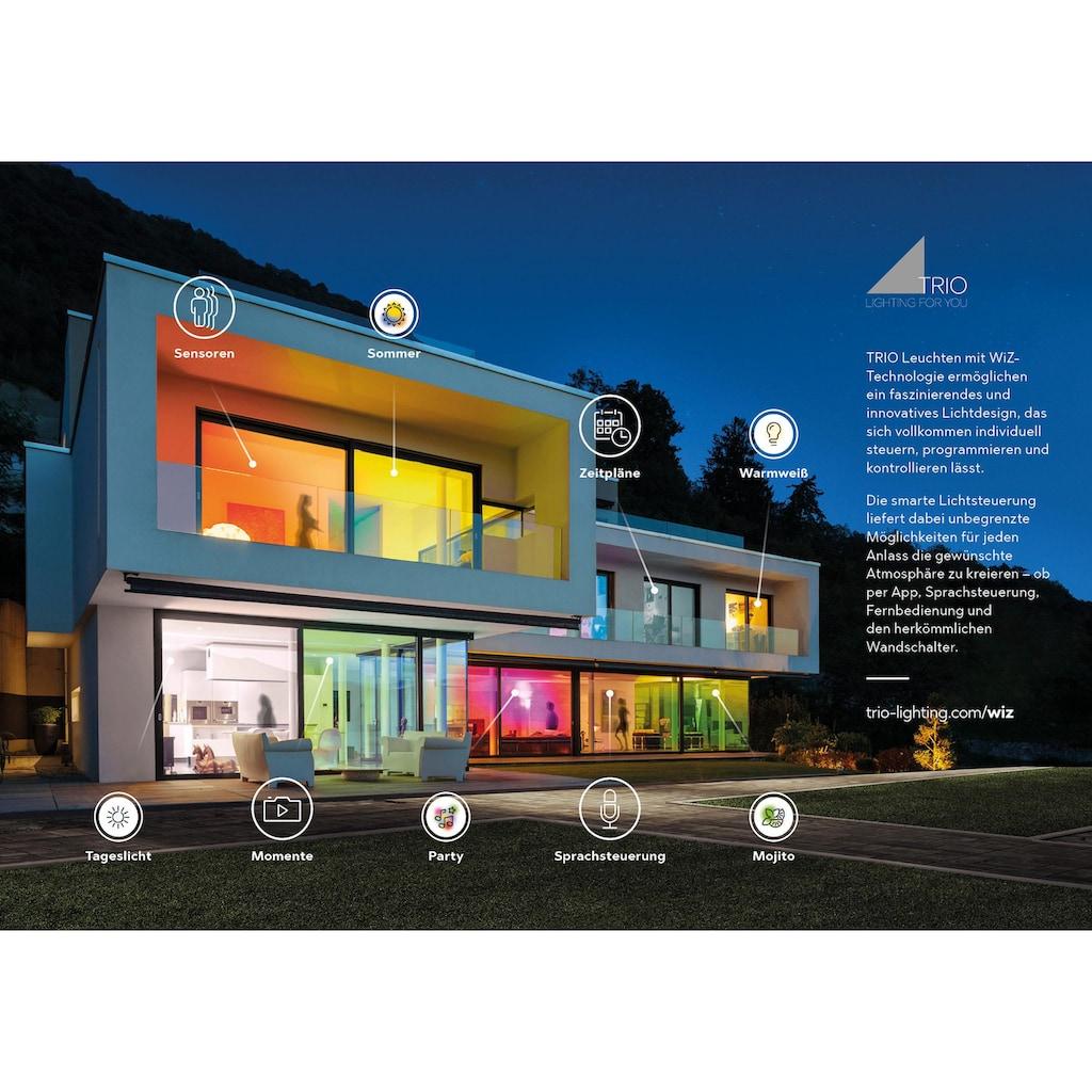 TRIO Leuchten LED Deckenleuchte »IMARA«, LED-Board, Warmweiß-Neutralweiß-Kaltweiß-Tageslichtweiß, Mit WiZ-Technologie für eine moderne Smart Home Lösung