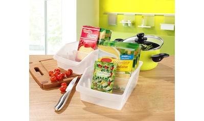 Ruco Organizer, (Set, 5 St.), Kunststoff, für den Küchenschrank kaufen