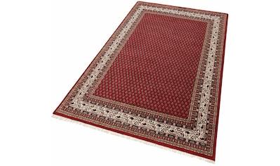 Orientteppich, »Chandi Mir«, THEKO, rund, Höhe 12 mm, manuell geknüpft kaufen