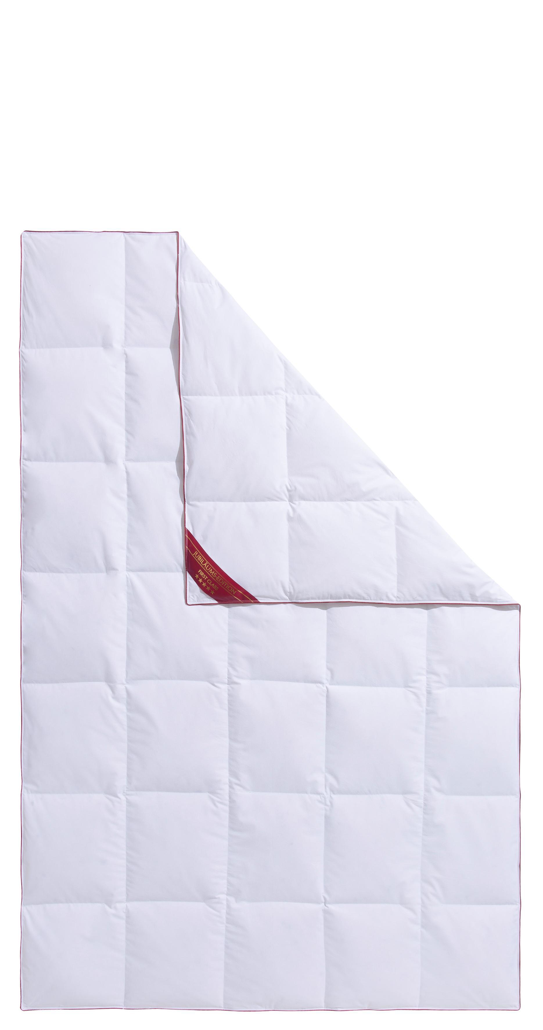 Daunenbettdecke Jule Hanse by RIBECO leicht Füllung: 90% Daunen 10% Federn Bezug: 100% Baumwolle