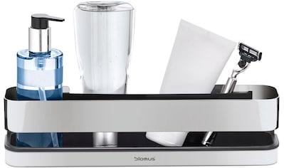 BLOMUS Duschkorb »Duschkorb  - NEXIO -  poliert« kaufen
