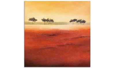 Artland Glasbild »Baumgrenze III«, Bäume, (1 St.) kaufen