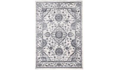carpetfine Teppich »Holy«, rechteckig, 8 mm Höhe, Vintage-Seiden-Optik, Wohnzimmer kaufen