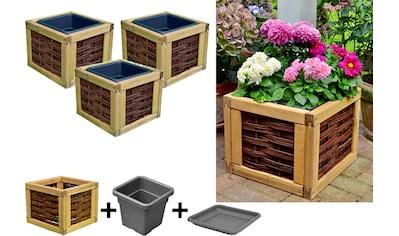 T&J Blumenkasten »Alexandria 1«, 3er Set, BxTxH: 40x40x32 cm kaufen