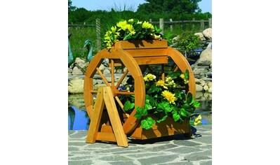 promadino Pflanzkübel »Blumenrad«, ØxH: 59x63 cm kaufen