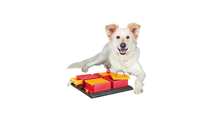 Trixie Hundespielzeug »Poker Box« kaufen