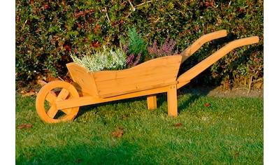 dobar Pflanzkübel »Schubkarre«, BxTxH: 29x107x30 cm kaufen