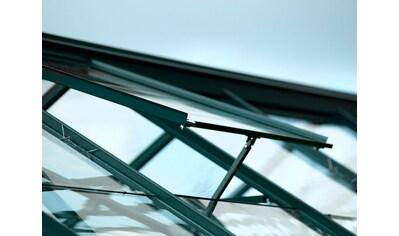 VITAVIA Dachfenster , ohne Verglasung, grün kaufen