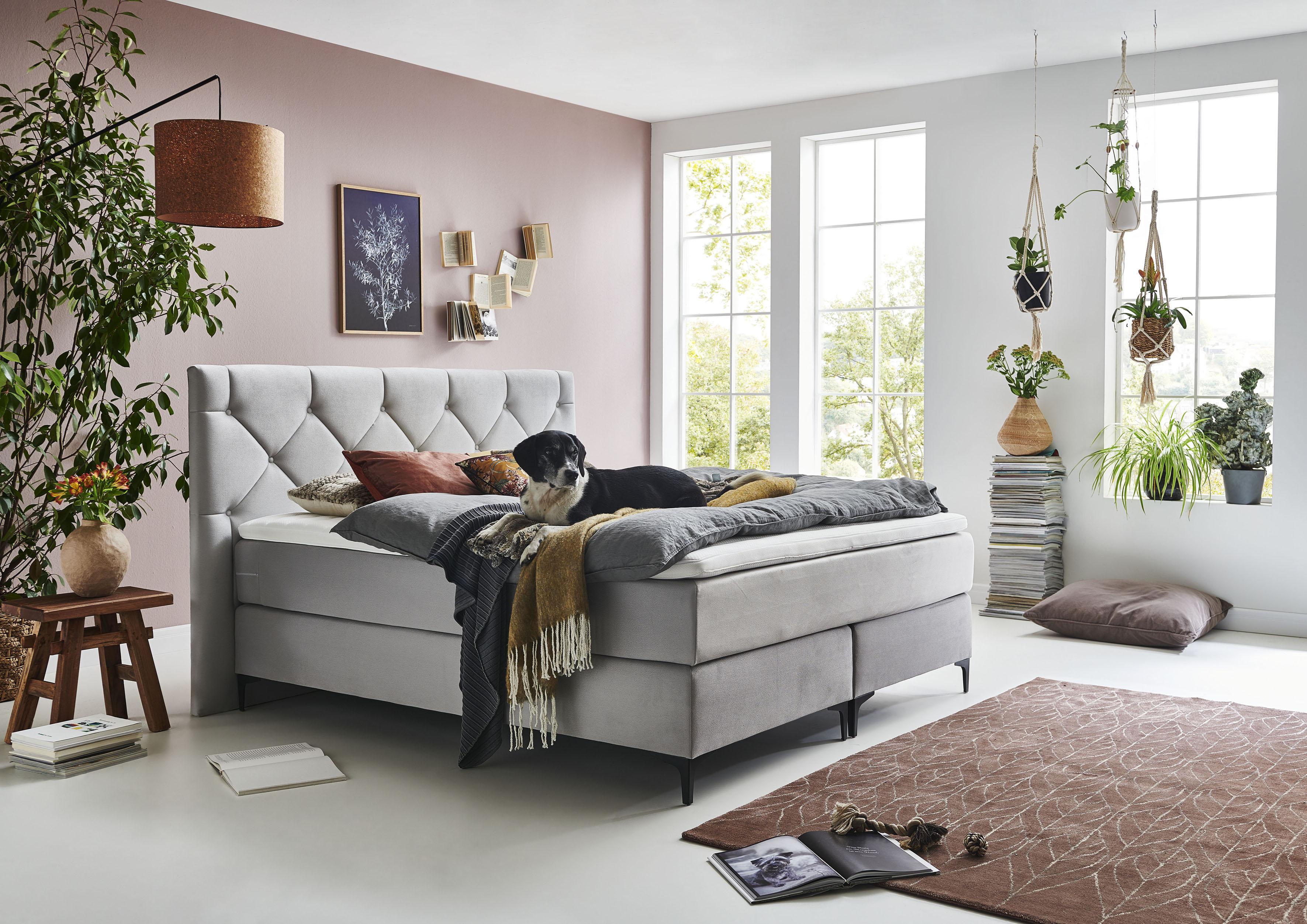 Premium collection by Home affaire Boxspringbett Aiko, 100% vegan, mit tier günstig online kaufen