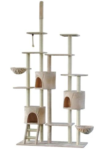 SILVIO DESIGN Kratzbaum - Deckenspanner »Attila«, B/T/H: 120/50/260 cm, beige kaufen