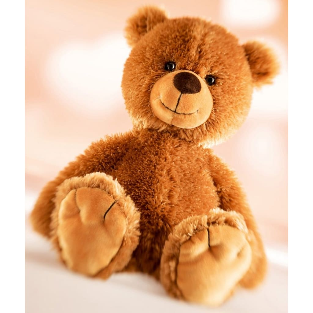 Schaffer® Kuscheltier »Teddy-Tom«