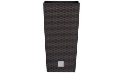 Prosperplast Pflanzkübel »Rato square«, BxTxH: 20x20x37,6 cm kaufen