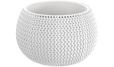 PROSPERPLAST Blumenkübel »Splofy Bowl«, weiss, ØxH: 29x19 cm kaufen